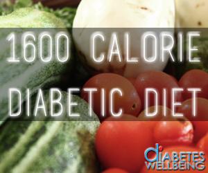 1600 Calorie Diabetic Diet Plan - Diabetes Well Being ...